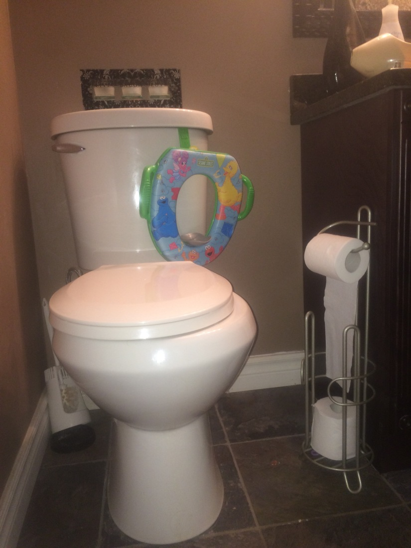 "Tales from the Can:  Toilet Time-Outs and Other Cool Things I Do to Qualify for the ""Mom of the Year Award"""